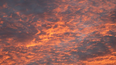 Project365.2 Day 20. Fire Sky. (MikeDPhotographs) Tags: vivid colorful orange clouds cloudy