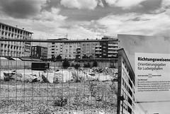 Die Hitze des Sommers (Manfred Hofmann) Tags: 500px analog brd jahreszeiten kurpfalz orte projekte flickr öffentlich ludwigshafenamrhein pfalz