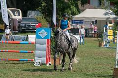 A9908997_s (AndiP66) Tags: springen langenthal 2018 5august2018 august pferd horse schweiz switzerland kantonbern cantonberne concours wettbewerb horsejumping equestrian sports springreiten pferdespringen pferdesport sport sony alpha sonyalpha 99markii 99ii 99m2 a99ii ilca99m2 slta99ii sony70400mm f456 sony70400mmf456gssmii sal70400g2 amount andreaspeters