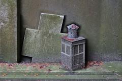 Het licht is al jaren gedoofd (Roel Wijnants) Tags: ccbync roelwijnants roelwijnantsfotografie roel1943 kruis grafsteen lantaren verroest vergeetmijniet begraafplaats