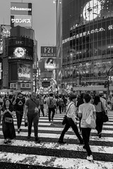 © Zoltan Papdi 2018-3813 (Papdi Zoltan Silvester) Tags: japon japan tokyo shibuya réel rue vie gens humain voyage journalisme real street life people human trip journalism ruedelaville piéton ville foule trottoir passageclouté chaussée groupe urbain citystreet pedestrian city crowd sidewalk zebracrossing pavement group urban