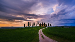 Tuscany 😍 (dawvon) Tags: provinceofsiena cypress landscape sunset plants cloudy city traffic trees tuscany road travel twilight valdorcia italy europe pienza nature dusk halflight italia italianrepublic provinciadisiena repubblicaitaliana siena toscana