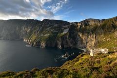 At the Edge of the world (trojanhorse1956) Tags: donegal sunset league slieve atlantic cliffs landscape grass sea sky nikon