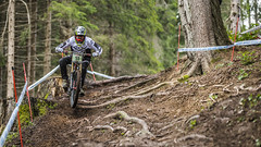 51 (phunkt.com™) Tags: val di sole world cup 2018 photos phunkt phunktcom keith valentine dh downhill race