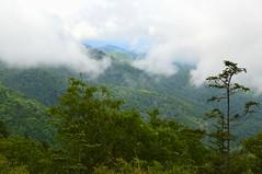Mountain Misty View (npbiffar) Tags: landscape mountain green forest mist sky tree woods npbiffar 1685mm d3200 nikon