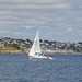 Sailing off St Mawes