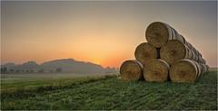 Strohpyramide (Robbi Metz) Tags: deutschland germany bayern bavaria reischenau landscape forest fields sunrise farming agriculture colors canoneos