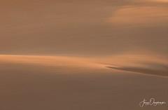 Wind storm over dunes (Jerzy Orzechowski) Tags: wind sandwichharbour dunes sand shadows sunset orange namibia landscape abstract minimalism
