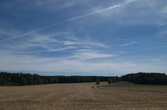 IMGP8769 (hlavaty85) Tags: field countryside krajina pole