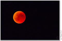 IMG_9924_Blutmond_20180727 (Mr.Vamp) Tags: blutmondam27072018 blutmond mondfinsternis mrvamp vamp mond nacht night eclipseofthemoon moon darkness bloodmoon eos 70 d eos70d