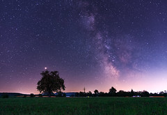 Milkyway with Lightpollution (alexander_skaletz) Tags: august night milkyway summer landscape landscapephotography nature photography field dark warm blue sky space nightskys village germany badenwürtemberg nikon d5300 nikond5300 tree stars milkywaychasers summernight longexposure himmel baum gras