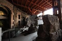 Colosseo_23