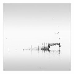 Loch Ness monster...... (paolo paccagnella) Tags: phpph© venetian lagoon northeast italy territorio ambiente acqua ass aquae architettura eos5dm3 canonequipment foto flickr fog net minimal minimalism bn bw blackandwhite biancoenero nebbia paccagnellapaolo 2018