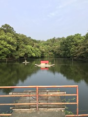 Lake (光輝蘇) Tags: 清大 university morning kk
