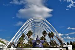 Una nube bien colocada (Anavicor) Tags: cielo árbol palmtree palmera garden jardín estructura moderno arquitectura architecture umbráculo umbracle nwn martesdenubes