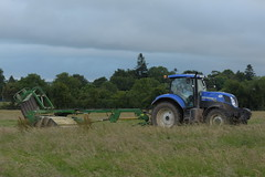 New Holland T7.185 Tractor with a John Deere 1365 Mower Conditioner (Shane Casey CK25) Tags: new holland t7185 tractor john deere 1365 mower conditioner nh cnh blue newholland rathcormac traktor traktori tracteur trekker trator ciągnik hay hay18 hay2018 grass grass18 grass2018 winter feed fodder county cork ireland irish farm farmer farming agri agriculture contractor field ground soil earth cows cattle work working horse power horsepower hp pull pulling cut cutting crop lifting machine machinery nikon d7200