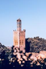 Challah Rabat-Morocco (simotravel) Tags: morocco photography passion travel landscape 50mm18g canon nikon