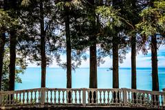 First line (Melissa Maples) Tags: batumi batum ბათუმი adjara აჭარა georgia gürcistan sakartvelo საქართველო asia 土耳其 apple iphone iphonex cameraphone მწვანეკეპი mtsvanecape ბოტანიკურიბაღი botanicalgarden blacksea sea water railing rail ledgebanister trees