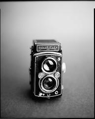 Rolleiflex (Yael P) Tags: intrepid intrepidcamera largeformat 8x10 papernegative ilford monochrome blackwhite believeinfilm shotonfilm filmisnotdead