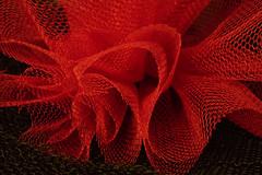 Net flower (me.behindthelens) Tags: mesh macro macromonday net red black
