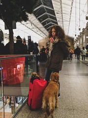 Random people and pets at the station (LUMEN SCRIPT) Tags: station people paris colours streetphoto dog mirror glass reflection red