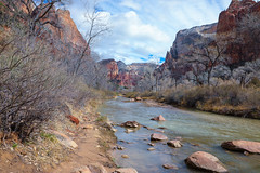 Zion National Park 2018 (Photography By Alberto) Tags: virginriver zionnp zion