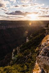 Zion 2018-037_ILCE-7RM3-31 mm-180528_180528-ILCE-7RM3-31 mm-191026__STA5125 (Staufhammer) Tags: sony sonya7riii a7riii sonyalpha sony1635mmf28gm sony1635mm sonygm sony85mmf18 zion nationalparks nationalpark zionnationalpark grandcanyon landscape alphashooters travel valley fire state park valleyoffire valleyoffirestatepark