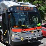 Metrobus says GO CAPS thumbnail