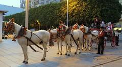 Desfile de Carruajes.Feria de Málaga.Andalucía. (For Ali Nashme) (lameato feliz) Tags: málaga feria carruajes cochesdecaballos caballos