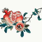 Pomegranate by Kōno Bairei (1844-1895). Digitally enhanced from our own original 1913 edition of Barei Gakan. thumbnail