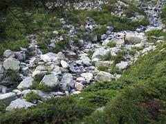 P1010998 (laurent.guillon) Tags: paysage