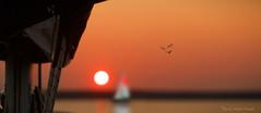 Paradis nautique ... ( P-A) Tags: voilier nautisme sport lac rivière eau été chaleur coucherdesoleil coque reflets calme paix reposant majestueux photos simpa© cvgr sunsetsofourhearts photo québec jesuisvenuevousdire