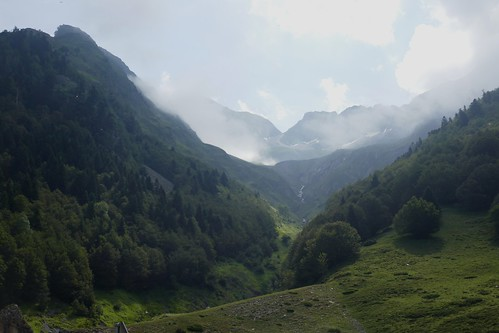 Haute vallée d'Ossau, Béarn, Pyrénées Atlantiques, Aquitaine, France.