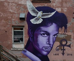 When doves cry. - Prince (remiklitsch) Tags: icon legend wall dove purple mural streetart minneapolis minnesota nikon remiklitsch urban street city color colorful prince hennepinavenue uptown rockcyfimartinez