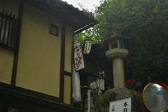 DSC_0021 (sxcxxhx) Tags: japan osaka kyoto hydrangea flower trip voyage 日本 大阪 京都 旅行