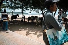 * (Sakulchai Sikitikul) Tags: street snap streetphotography summicron songkhla sony horse thailand seascape sea samilabeach silhouette 35mm leica