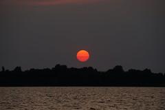 Sunset Bad Zwischenahn Sailingharbour (fynnspeckmann1) Tags: sun sunset sonne sonnenuntergang lake see beautiful germany deutschland trees bäume nature natur love sailing segeln joy