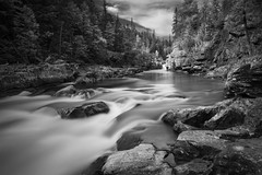 McDonald Creek No.3 (Thomas Pohlig) Tags: glaciernationalpark glacier nationalparks park montana monochrome mono stream creek longexposure trail trees water rocks sky landscape