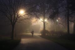 Blurry Nights (Aleksandra Vitorovic) Tags: novisad serbia dunavskipark fog foggy night