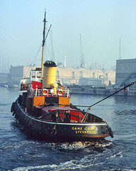 On the gog.. (Darren B. Hillman) Tags: vintagetugs rivermersey colourtransparency cocktugs gamecockv liverpoolscrewtowing liverpooldocks ships tugs
