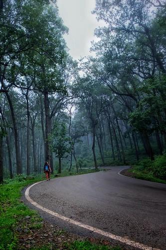 Monsoon in Uttarakhand