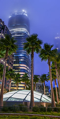 skypark palms (pbo31) Tags: sanfrancisco california city urban night dark august summer 2018 boury pbo31 color transbay transit center financialdistrictsouth cbd panoramic large stitched panorama architecture contemporary park over salesforce skylight palms blue hour atrium fog vertical
