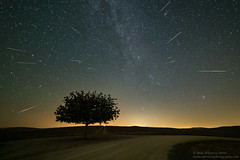 2018 Perseids (Rick Whitacre) Tags: perseidmeteorshower perseids meteors meteorshower