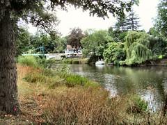A drink by the river (John McLinden) Tags: shropshire srewsbury severn riversevern water tree pub publichouse riverbank porthillfootbridge
