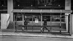 Bus Stop Closed (MoiVous) Tags: streetlife places adelaide cbdstreet