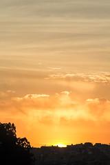 Alvorada (Felipe F Barros) Tags: alvorada nascerdosol sol luzesombra itapevi sãopaulo brasil fotografia euamoitapevi jardimsantarita jardim são carlos canon canont5 canon100mm 100mm canonbr canonbrasil canonsãopaulo canonitapevi