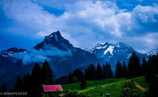 Swiss_Paradise