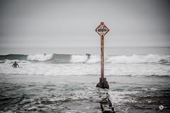 besoin de fraicheur... alerte canicule (Vongravier) Tags: surf surfing bolinas californie océan pacific