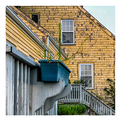 The Windowbox (Timothy Valentine) Tags: 2018 wednesday 0818 window large stairs eastbridgewater massachusetts unitedstates us