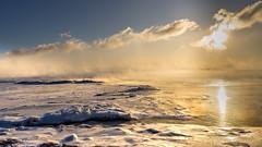 ile 2018-117 (Tasmanian58) Tags: river ice winter quebec canada distagon zeiss contax 25mm stjean sunrise landscape «orleans island» «ile dorléans»